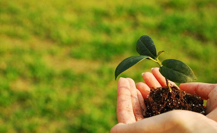 地域社会・環境への取り組み